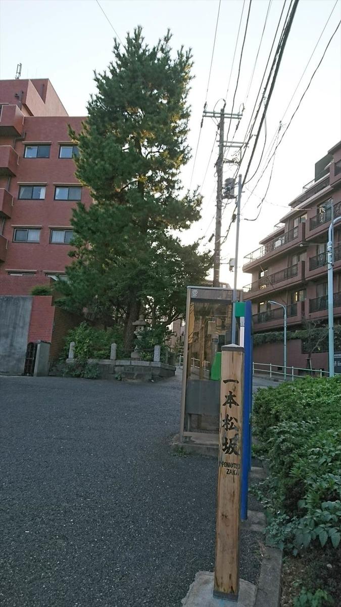 f:id:kiha-gojusan-hyakusan:20190720061623j:plain