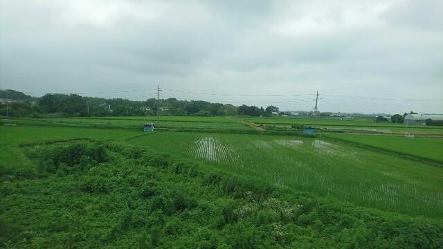 f:id:kiha-gojusan-hyakusan:20190722225657j:image