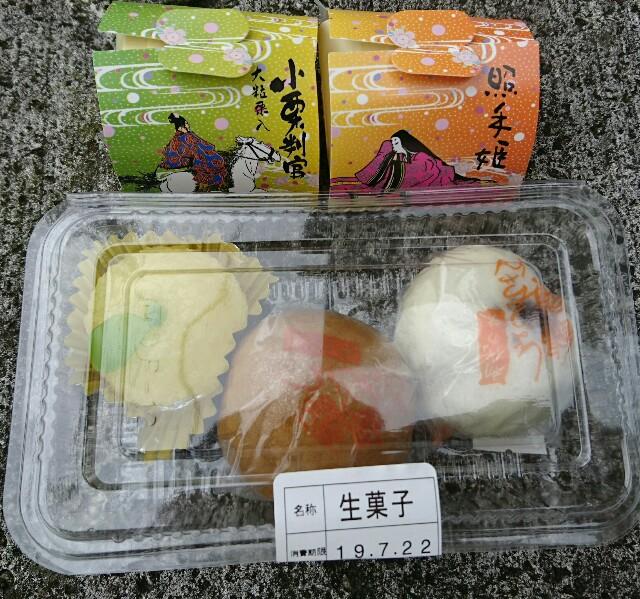 f:id:kiha-gojusan-hyakusan:20190722230008j:image