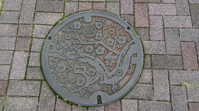 f:id:kiha-gojusan-hyakusan:20190724004338j:image