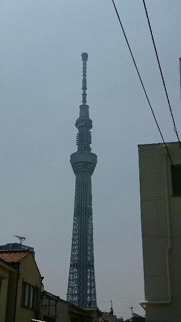 f:id:kiha-gojusan-hyakusan:20190808112846j:image
