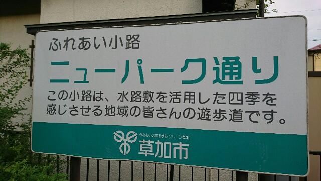 f:id:kiha-gojusan-hyakusan:20190902000747j:image