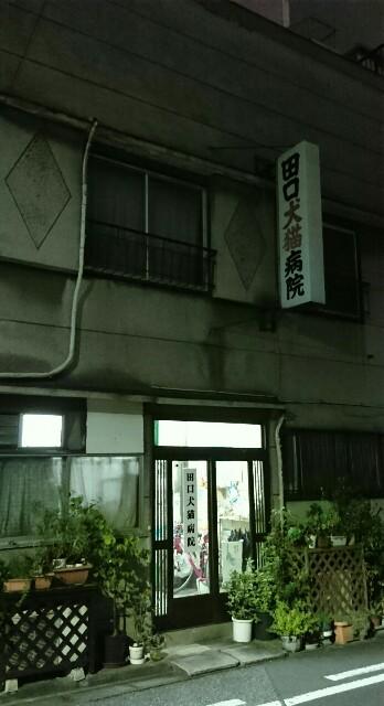 f:id:kiha-gojusan-hyakusan:20190904204502j:image