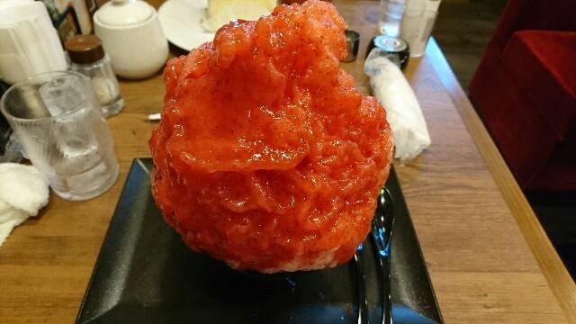 f:id:kiha-gojusan-hyakusan:20190908220146j:image