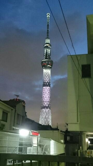 f:id:kiha-gojusan-hyakusan:20190930234008j:image