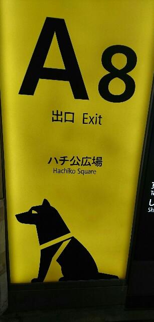 f:id:kiha-gojusan-hyakusan:20191104020041j:image