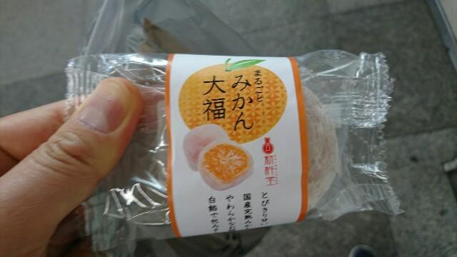 f:id:kiha-gojusan-hyakusan:20191104020307j:image
