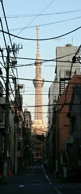 f:id:kiha-gojusan-hyakusan:20191110175252j:image