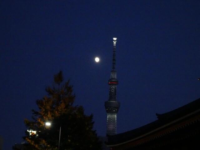 f:id:kiha-gojusan-hyakusan:20191110195850j:image
