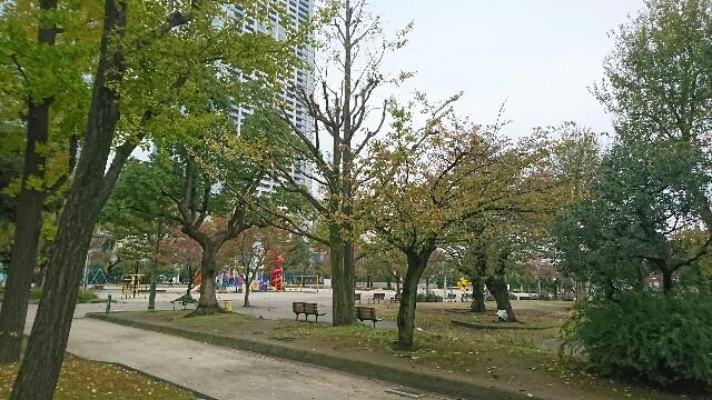 f:id:kiha-gojusan-hyakusan:20191115084609j:image