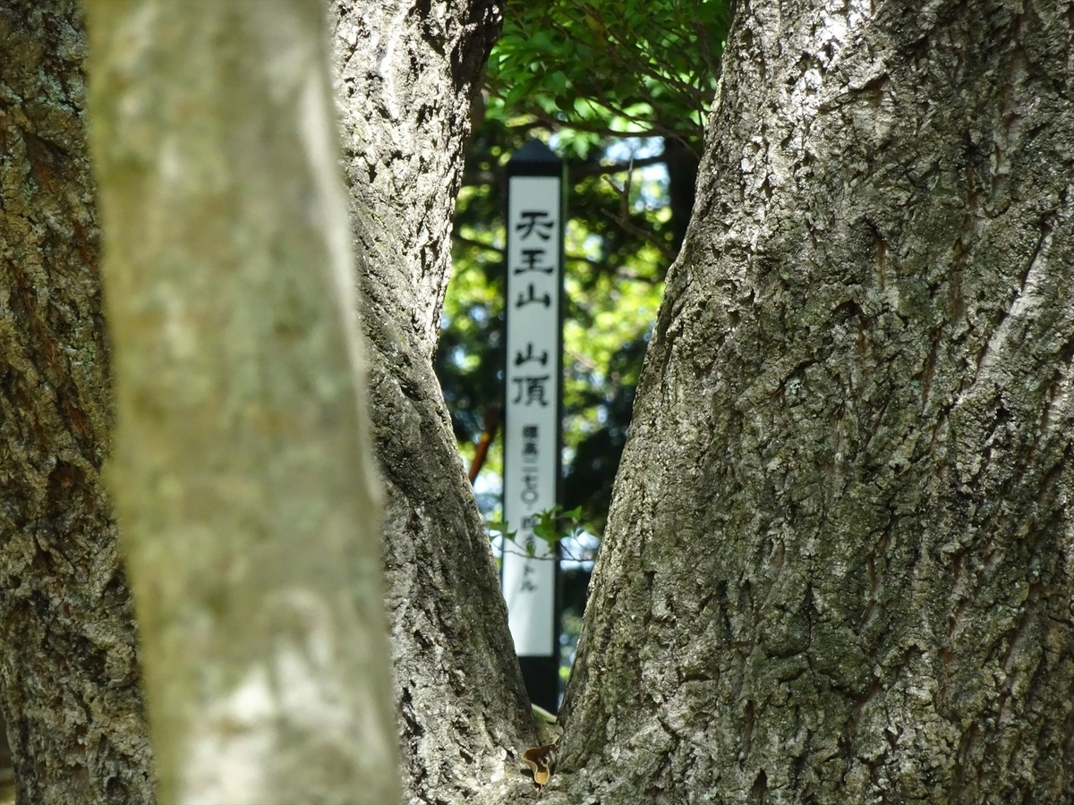 f:id:kiha-gojusan-hyakusan:20191116013201j:plain