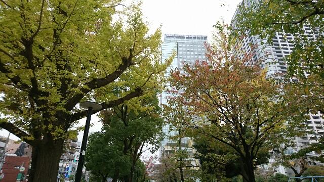f:id:kiha-gojusan-hyakusan:20191119231012j:image