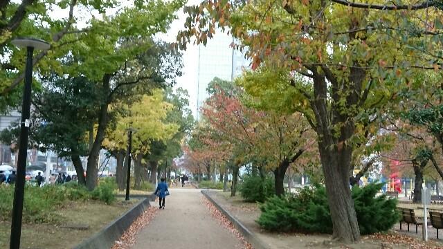 f:id:kiha-gojusan-hyakusan:20191122120041j:image