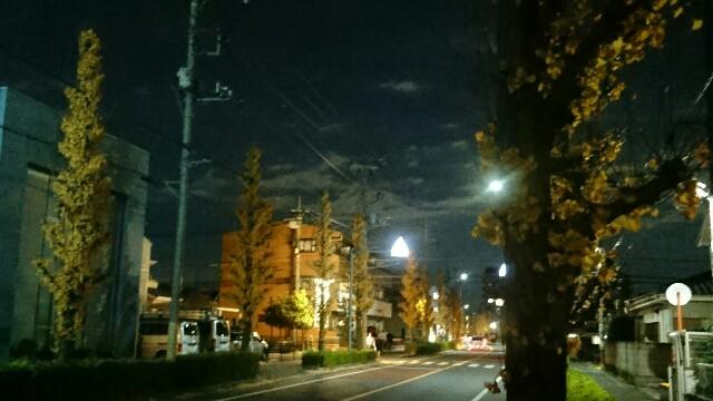 f:id:kiha-gojusan-hyakusan:20191213000215j:image