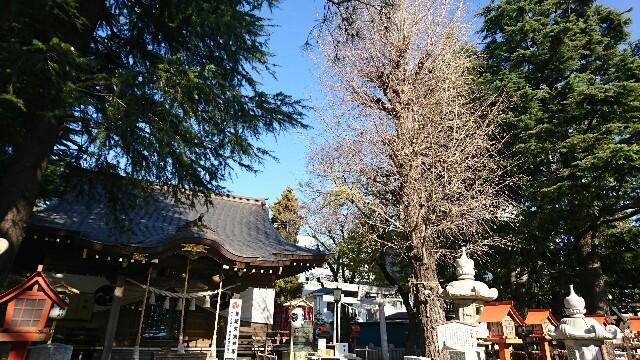 f:id:kiha-gojusan-hyakusan:20191215010029j:image