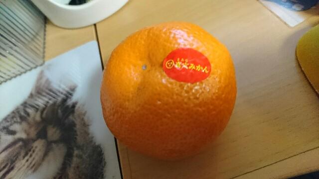 f:id:kiha-gojusan-hyakusan:20200101171358j:image
