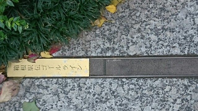 f:id:kiha-gojusan-hyakusan:20200108082040j:image