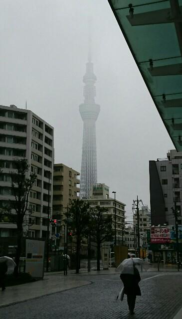 f:id:kiha-gojusan-hyakusan:20200120083343j:image