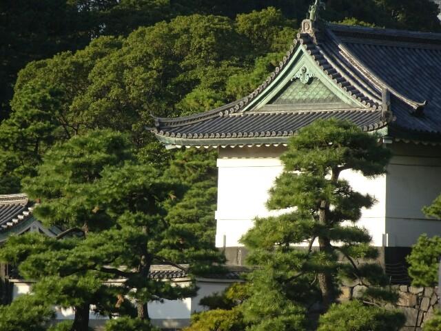 f:id:kiha-gojusan-hyakusan:20200124013152j:image