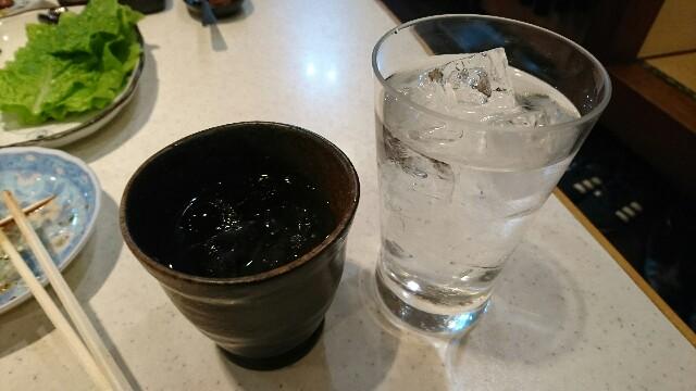 f:id:kiha-gojusan-hyakusan:20200209173134j:image