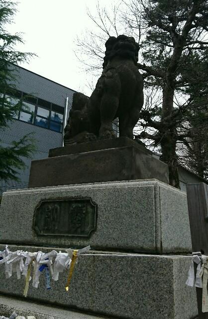 f:id:kiha-gojusan-hyakusan:20200309205314j:image
