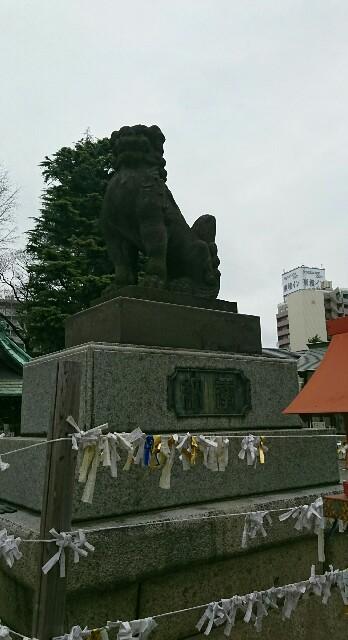 f:id:kiha-gojusan-hyakusan:20200309205327j:image
