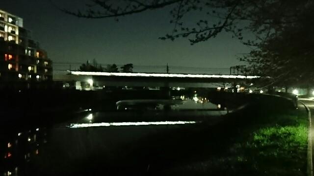 f:id:kiha-gojusan-hyakusan:20200319012541j:image