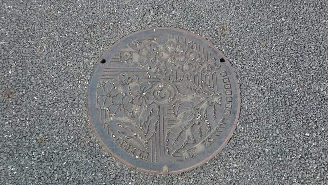 f:id:kiha-gojusan-hyakusan:20200321020546j:image