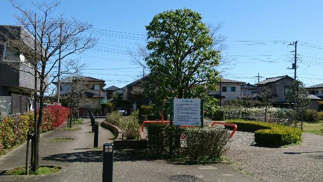 f:id:kiha-gojusan-hyakusan:20200323200459j:image