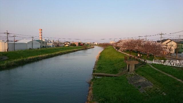 f:id:kiha-gojusan-hyakusan:20200405141538j:image