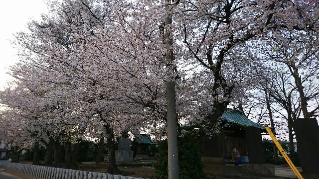 f:id:kiha-gojusan-hyakusan:20200405160940j:image