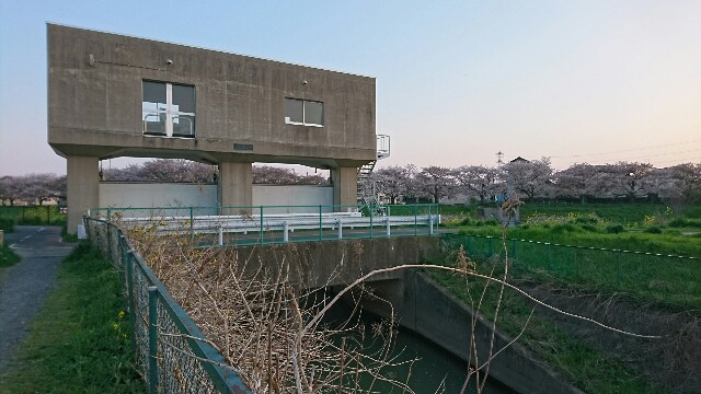 f:id:kiha-gojusan-hyakusan:20200405161559j:image