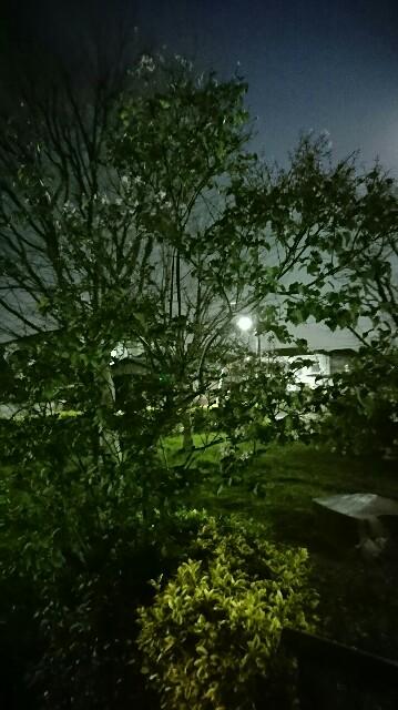 f:id:kiha-gojusan-hyakusan:20200409172951j:image