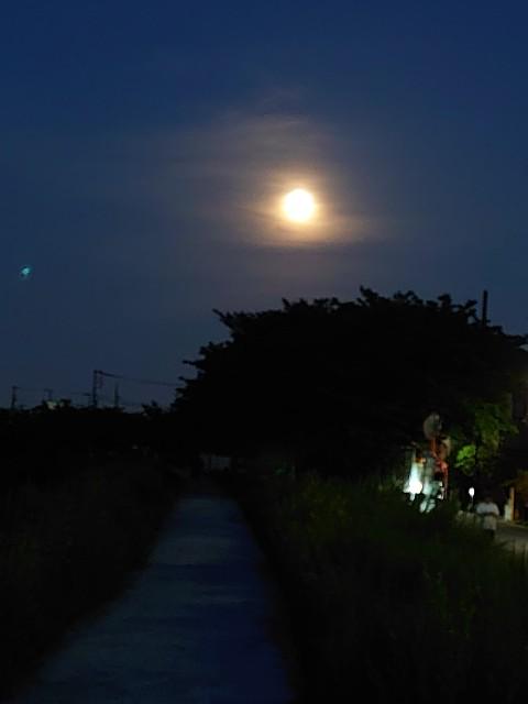 f:id:kiha-gojusan-hyakusan:20200509023743j:image