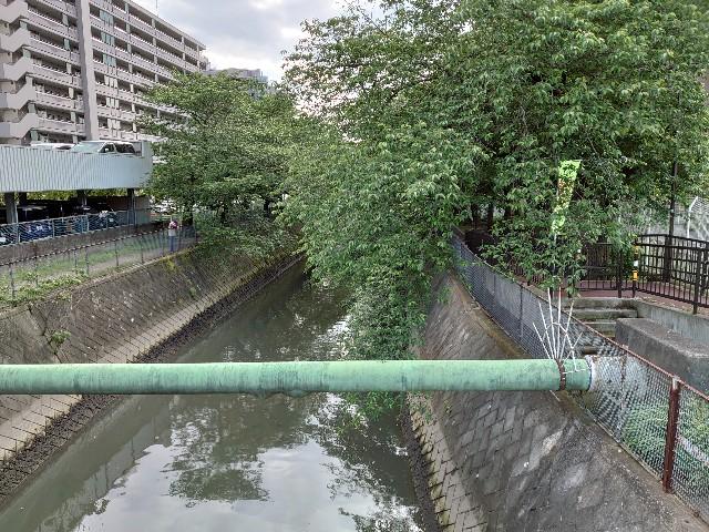 f:id:kiha-gojusan-hyakusan:20200523222515j:image
