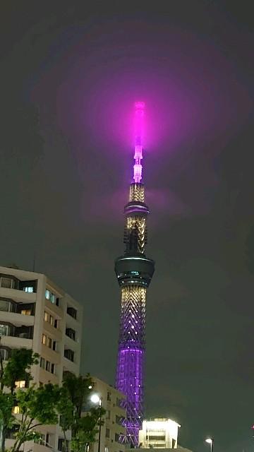 f:id:kiha-gojusan-hyakusan:20200601213958j:image