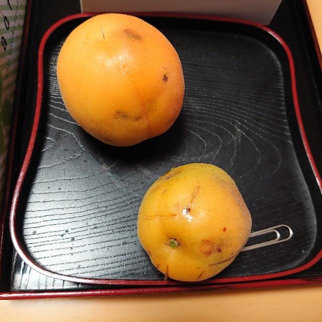 f:id:kiha-gojusan-hyakusan:20200604123929j:image