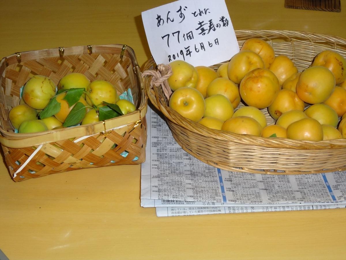 f:id:kiha-gojusan-hyakusan:20200604232339j:plain