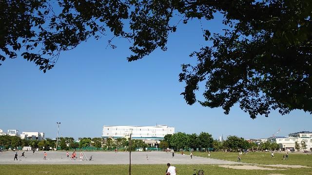 f:id:kiha-gojusan-hyakusan:20200607224335j:image
