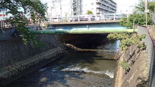 f:id:kiha-gojusan-hyakusan:20200608002429j:image