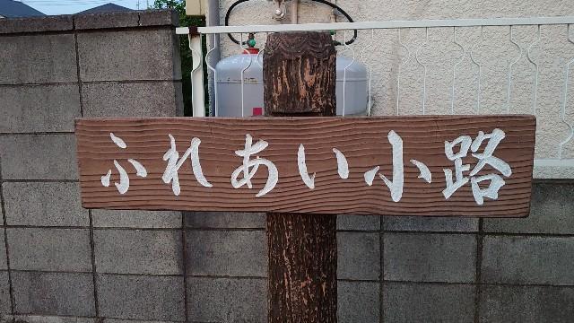 f:id:kiha-gojusan-hyakusan:20200609204318j:image