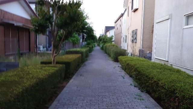 f:id:kiha-gojusan-hyakusan:20200609204338j:image