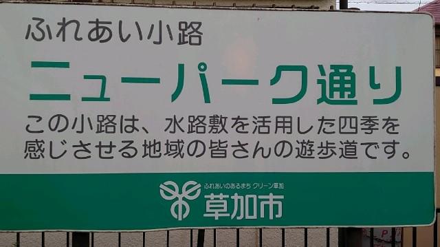 f:id:kiha-gojusan-hyakusan:20200609204849j:image