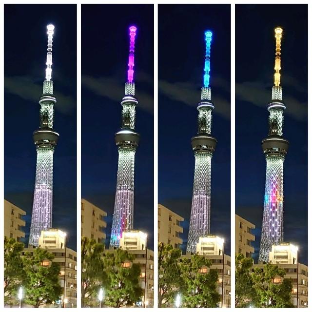 f:id:kiha-gojusan-hyakusan:20200610221253j:image