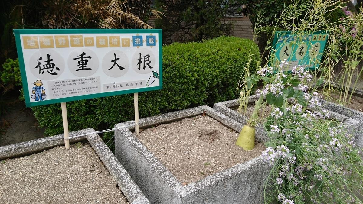 f:id:kiha-gojusan-hyakusan:20200614211559j:plain
