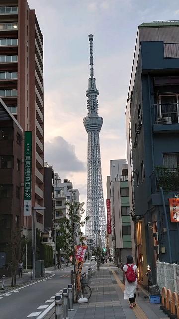 f:id:kiha-gojusan-hyakusan:20200629220522j:image