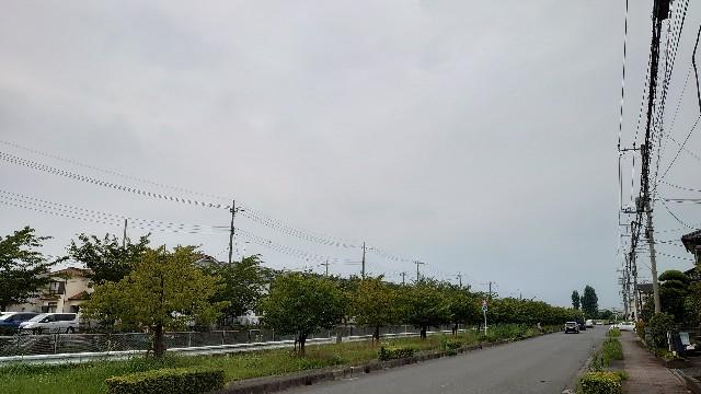 f:id:kiha-gojusan-hyakusan:20200724205728j:image