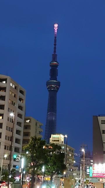 f:id:kiha-gojusan-hyakusan:20200728192933j:image