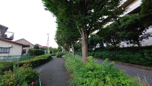 f:id:kiha-gojusan-hyakusan:20200802222215j:image