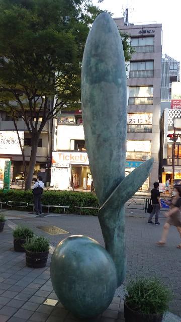 f:id:kiha-gojusan-hyakusan:20200804193150j:image